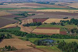 Vista aérea das lavouras de trigo próximo a cidade de Cruz Alta, no interior do Rio Grande do Sul. FOTO: Jefferson Bernardes / Agência Preview