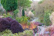 Bodnant Garden - February in the Winter Garden