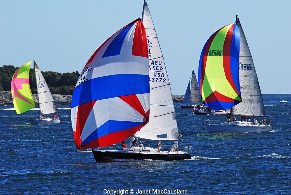 Brightly colored spinakers sail by in a Newport Regatta.  Regatta is a Venitian word for contest.