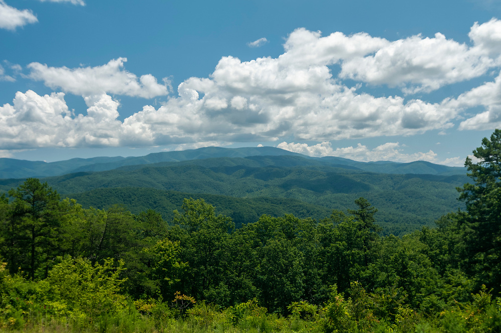 View of Gregory Bald and Parson Bald from the Chilhowee Mountain Overlook on the Foothills Parkway in Great Smoky Mountains National Park in Walland, Tennessee on Wednesday, August 12, 2020. Copyright 2020 Jason Barnette