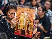 26 NOVEMBER 2016 - BANGKOK, THAILAND:  A woman holds a portrait of the Late King of Thailand while she prays for His Majesty in Bangkok's Chinatown. Thousands of people gathered on Yaowarat Road in the heart of Bangkok's Chinatown to honor Bhumibol Adulyadej, the Late King of Thailand. The event was organized by the Thai-Chinese community and included a performance by the Royal Thai Navy orchestra of music composed by the Late King, a prayer by hundreds of Buddhist monks. It concluded with a candlelight vigil. The King died after a long hospitalization on October 13. The government has declared a one year mourning period. HRH Crown Prince Maha Vajiralongkorn, the Heir Apparent and Late King's son, is expected to be name the King next week. He will be known as Rama X.      PHOTO BY JACK KURTZ
