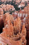 Detalles del Bryce Canyon, Utah, Estados Unidos