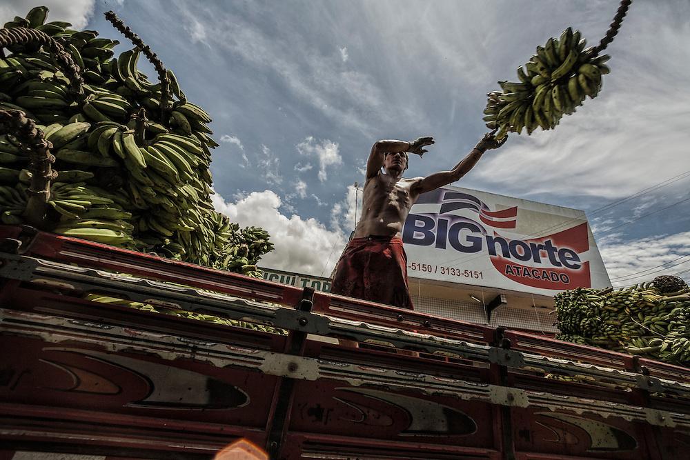 Brazil, Amazonas, rio Negro, Manaus. Quartier du port. Marche aux bananes.