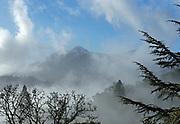 Mount Tamalpais and Rising Clouds,Marin County, California