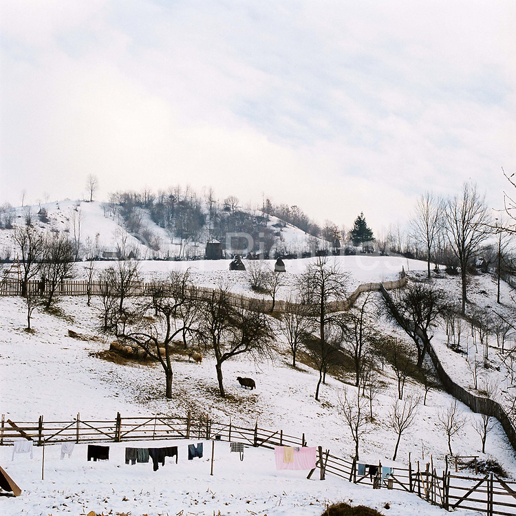 Winter agricultural landscape in the village of Botiza, Maramures, Romania