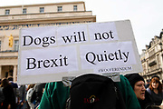 A placard reading Dogs will not Brexit Quietly is seen amongst pet owners during an anti Brexit Wooferendum rally on October 07, 2018 in London, England to protest against Britain leaving the European Union.
