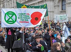 Extinction Rebellion campaigners, London,  24 November 2018
