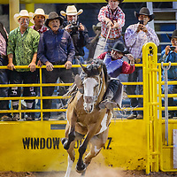 Bareback rider Jacob Etsitty rides for a 77 points during the first round of the Navajo Nation Fair rodeo in Window Rock Thursday.
