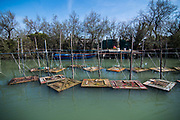 """VENICE, ITALY - APRIL 2018. <br /> The group of tourists arrives at the place where Emiliano, a moecante (crabs fisherman), keeps his """"vieri"""", wooden boxes where the crabs are placed when they are not ready yet, but almost. """"Vieri"""" are always close to a """"cason"""", the typical temporary house of the fishermen of the Venetian lagoon."""