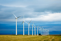 The landscape near Pincher Creek is inundated with windmills and wind farms. They are amazing and beautiful all at the same time.<br /> <br /> ©2013, Sean Phillips<br /> http://www.RiverwoodPhotography.com