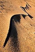 Israel, Mediterranean sea wind affects on sand dune