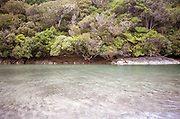 Images of the stunning native forrest of Rakiura / Stewart Island, a sub-antarctic island, south of the South Island of New Zealand. The silence is pristine here, the air crisp and clear, just the sea passage can be challenging!