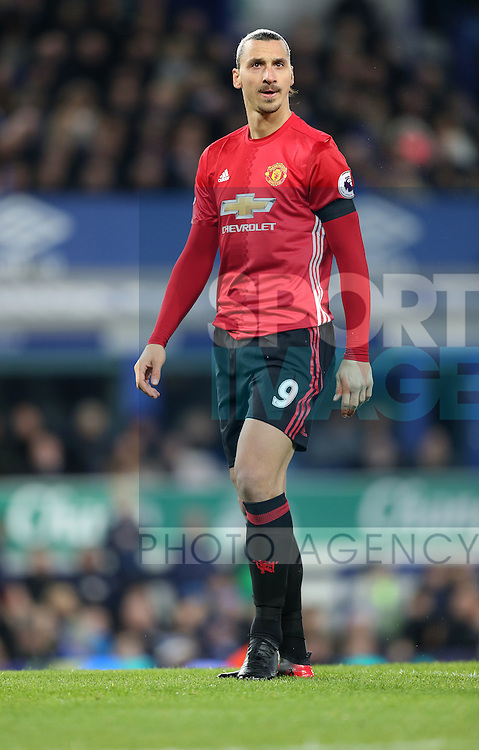 Zlatan Ibrahimovic of Manchester United during the Premier League match at Goodison Park, Liverpool. Picture date: December 4th, 2016.Photo credit should read: Lynne Cameron/Sportimage