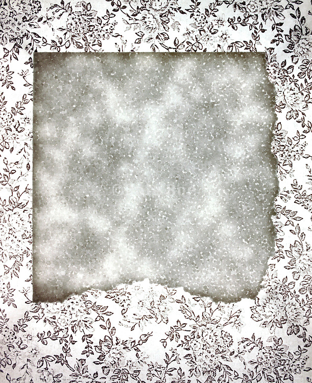 abstraction in white with floral design
