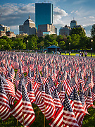 Flags on Memorial Day in Boston Commons