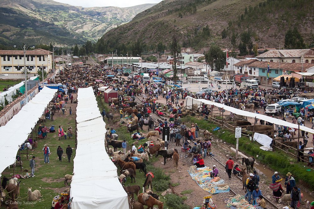 Annual livestock fair in Urcos, Peru, the town at the beginning of the Interoceanica SUR near Cusco. The new highway has facilitaed trade between Andean communities by speeding up transporation - now people are able to bring their livestock and foodstuffs to cities such as Urcos and Cusco in almost 1/8th of the time.