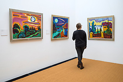 Visitor looking at paintings by Karl Schmidt-Rottluff at the  Brücke Museum in Dahlem , Berlin, Germany
