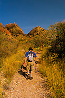 Hikers on the Window Trail, Chisos Basin (Chisos Mountains), Big Bend National Park, Texas USA.