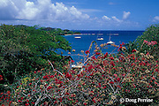 yacht harbor, Saint Vincent,  St. Vincent & the Grenadines, West Indies ( Eastern Caribbean Sea )