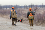 John Zeman (left) and Bob St. Pierre, along with St. Pierre's German Shorthair, Esky, hunt pheasants on a Minnesota public hunting area.