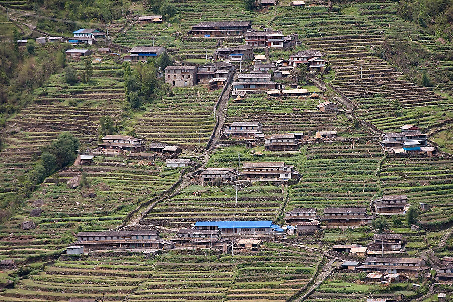 The stone houses and terraced fields of Chhomrong village are set against a steep hillside along the Annapurna Sanctuary Trek, Himalaya Mountains, Nepal.