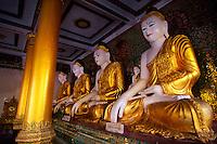 Row of Buddhas, Shwedagon Pagoda, Yangon (Rangoon), Myanmar (Burma)
