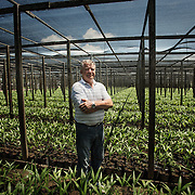 Luigi Vaccaro. The entrepreneur xearense Italian-born Luigi Vaccaro, is the owner of the largest agricultural project linked to ACAI. The production of raw materials (Core) comes from own plantations irrigated acai, currently with a total of 1,174 hectares.