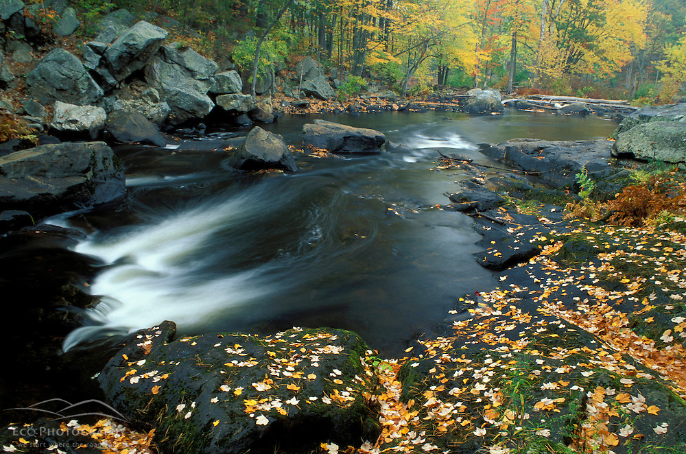 Autumn leaves at Packers Falls on the Lamprey River.  Durham, NH