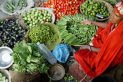 Okra, tomatoes, spinach and eggplant for sale at the Ujjain municipal market. (Supporting image from the project Hungry Planet: What the World Eats.)   Grocery stores, supermarkets, and hyper and megamarkets all have their roots in village market areas where farmers and vendors would converge once or twice a week to sell their produce and goods. In farming communities, just about everyone had something to trade or sell. Small markets are still the lifeblood of communities in the developing world.
