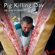 Pig Killing | Pictures Photos Images & Fotos