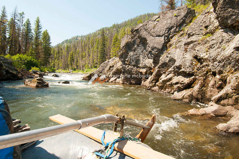 Scenic view of the Middle Fork of the Salmon River from the Sweep boat.