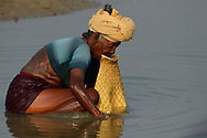Fishing woman, Pulicat Lake, Tamil Nadu, India