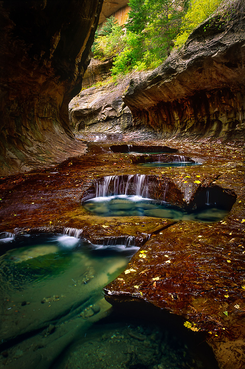 Cascades and fall leaves at North Creek in the Subway area of Zion National Park, Utah