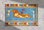 The 'Bull leaper' Minoan fresco, reconstructed at Knossos Archaeological Site, Crete ..<br /> <br /> Visit our GREEK HISTORIC PLACES PHOTO COLLECTIONS for more photos to download or buy as wall art prints https://funkystock.photoshelter.com/gallery-collection/Pictures-Images-of-Greece-Photos-of-Greek-Historic-Landmark-Sites/C0000w6e8OkknEb8 <br /> .<br /> Visit our MINOAN ART PHOTO COLLECTIONS for more photos to download  as wall art prints https://funkystock.photoshelter.com/gallery-collection/Ancient-Minoans-Art-Artefacts-Antiquities-Historic-Places-Pictures-Images-of/C0000ricT2SU_M9w