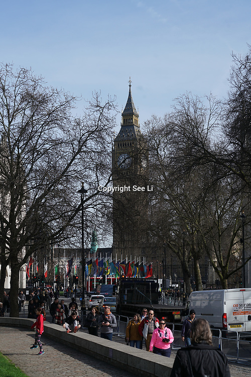 London, 13th March 2017, UK Weather: Spring sunshine blossom flowers at St James parkBig Ben in London,UK. by See Li