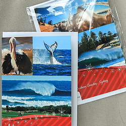Pelicans, Whale Tail and Bombie Christmas Card