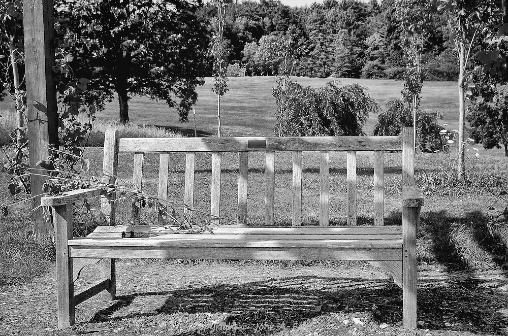 This bench is sitting under a wooden overhang that provides partial shade in a sunny field.  It looks very comfortable and inviting.