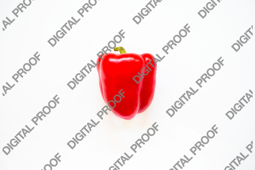 Red bell pepper isolated in studio with a white background ready for clipping