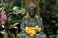 Buddha and Orchid Flowers at Marie Selby Garden in Sarasota, Florida. Image taken with a Nikon D300 and 105 mm f/2.8 lens (ISO 800, 105 mm, f/8, 1/60 sec).