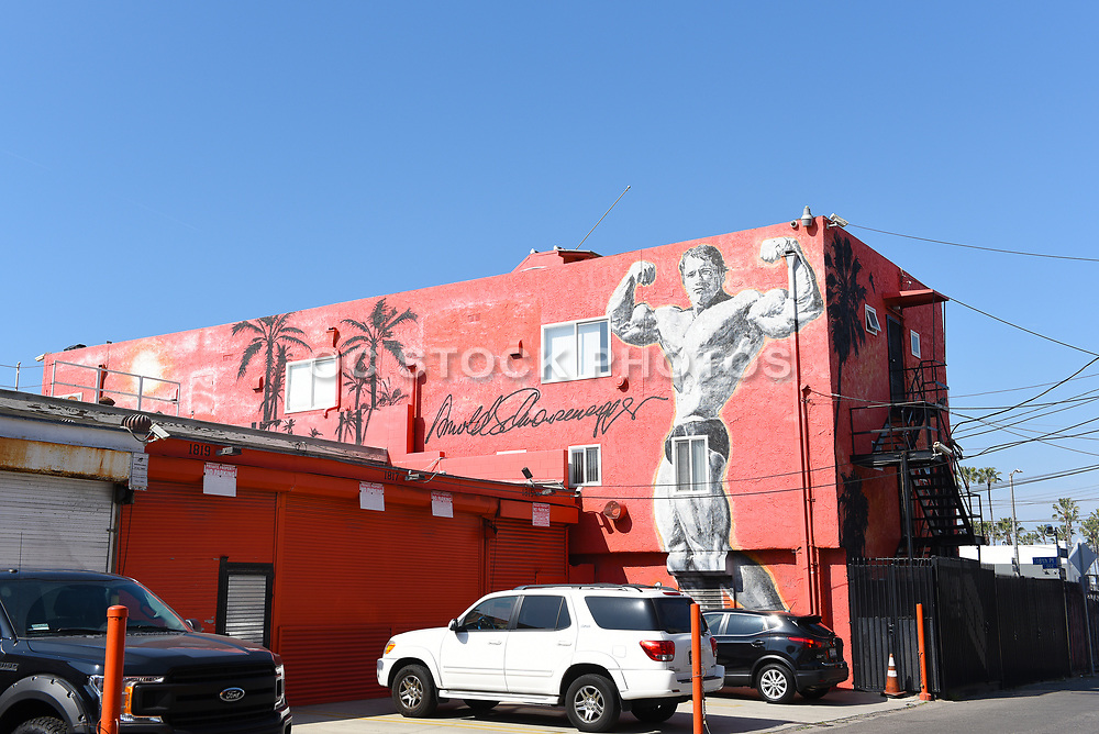 Arnold Schwarzenegger Mural on a Building Exterior of Venice Beach