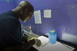 Dr. Willie Parker, examines tissue from an aborted pregnancy, at the Jackson Women's Health Organization, on Tuesday August 19, 2014, in Jackson, Mississippi. This is the only clinic in the entire state that performs abortions. (Photo © Jock Fistick)