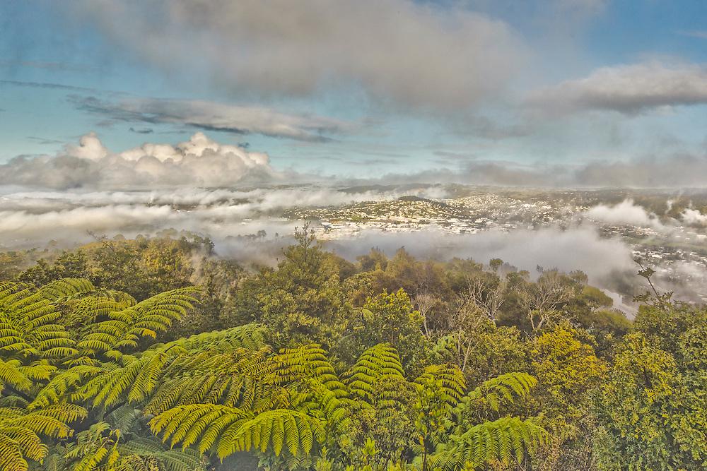 Fog rolls in to Whangarei
