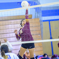 Rock Point Cougar Alissa Johnson (13) spikes to the Navajo Pine Warriors at Navajo Pine High School in Navajo Tuesday.