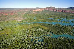 An extensive mangrove system meets the sandstone escarpment near the Hunter River on the Kimberley coast.