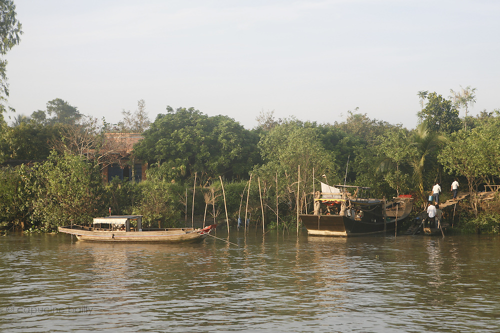 A bank of the first arm (Tien Giang) of the river Mekong. .March 18th 2007.