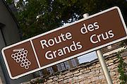 Route des Grands Crus. The village. Pommard, Cote de Beaune, d'Or, Burgundy, France