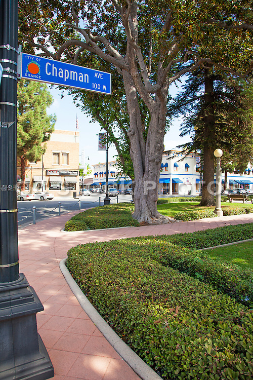 Chapman Ave in Old Towne Orange Historic District