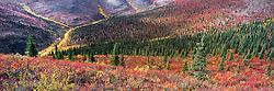 Fall along the Klondike Plateau