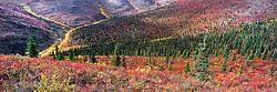 Fall along the Klondike Plateau