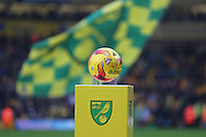 The match ball presented before the Sky Bet Championship match between Norwich City and Brighton and Hove Albion at Carrow Road, Norwich, England on 22 November 2014.